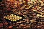 Golden paving by linda-Bee
