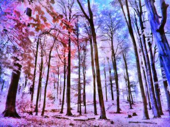 Candy Forrest infrared by MichiLauke