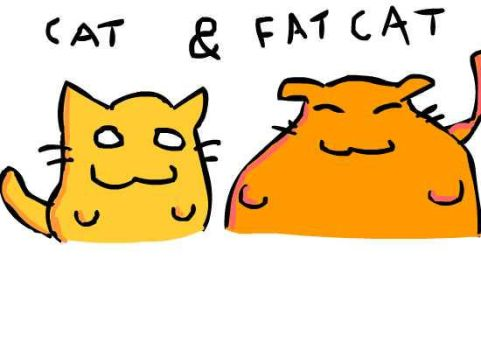 Cat and Fatcat by VIpJoe