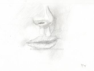 Sketchbook - Nose and Mouth by NikaraRoss