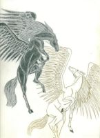 Winged Horses by chrisondra