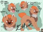 {Reference} Ethan the Floof by YaMan-TinCan