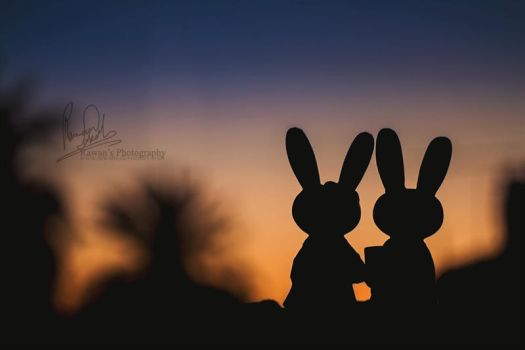 Silhouette - Bunnies edition by RawanS