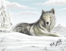 Grey Wolf by Partin-Arts
