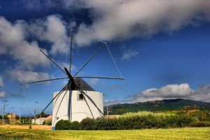 Windmills of Your Mind.. by Tigles1Artistry