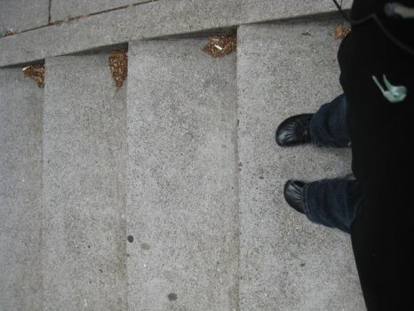 Shoes in San Francisco by ramonaquimby