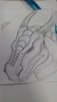 Dragon Head #2 by DarkDragonknight7