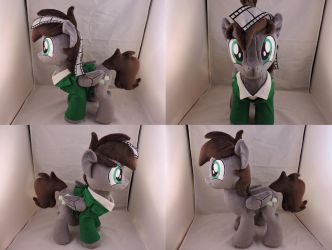 MLP OC Thoth Penswell Plush (commission) by Little-Broy-Peep