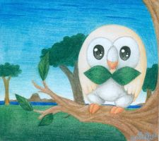 Rowlet by DeathTheDragon