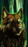 Commission: Valter by Brevis--art