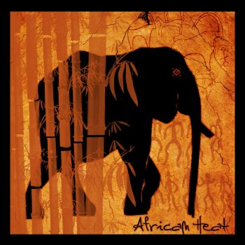 African Heat by aniabeataa