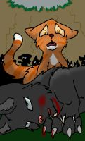 'why him of all cats?!' .:Warriors Bloodlines:. by frostthecat01