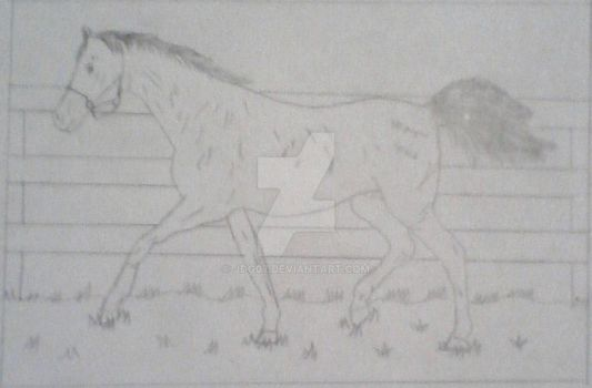 my first drawn horse by jdg07
