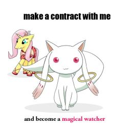 coobie wants to make a contract by Mihaaaa