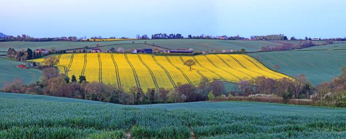 Worcestershire Morning by Capturing-the-Light