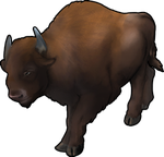 Bison Companion by TokoTime