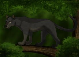 Nykamar as a Fossa by Tephra76