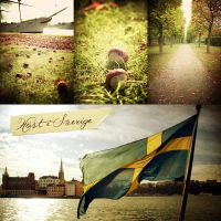 Autumn in Sweden by A-l-a-s-s-e-a
