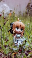 Saber Lily by PrincessTeppelin