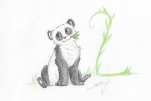 2nd- Po le panda by Liliandril