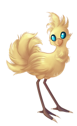 Chocobo by VioletRaine