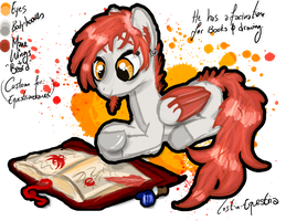 Custom by Lost-in-Equestria
