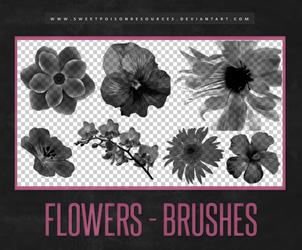 Flowers Brushes | Photoshop by sweetpoisonresources