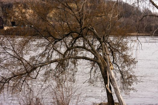 Mississippi River in April 2 by Katiemarie