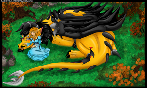 ~Dragon And The Maiden~ by StephDragonness
