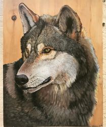 Wolf on wood head painting by Minionwolf711