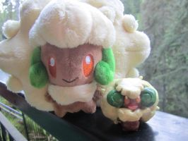My little Whimsicott
