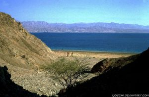 Red Sea near Taba by Woscha