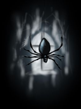 SPIDER by Arteomici