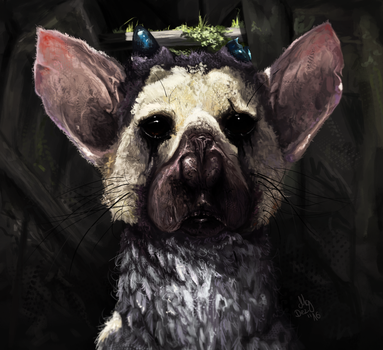 Trico by ColorstainedRaven