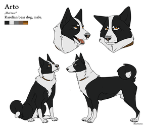 Reference Sheet - Arto by BlueHunter
