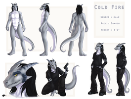 Cold Fire Reference sheet by Shalinka