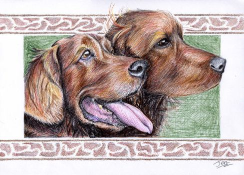 Merlot and Rufus by nunt