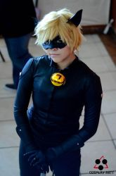Miraculous LadyBug-ChatNoir by Elliot-Baskerville
