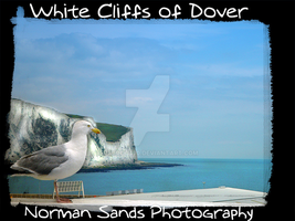 White Cliffs of Dover by ratdog420