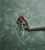 September wounds by NataliaDrepina