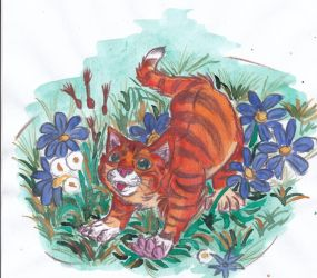 catcolor by Nianes