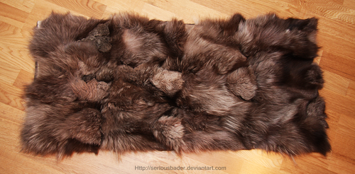 Silver fox blanket by seriousbadger