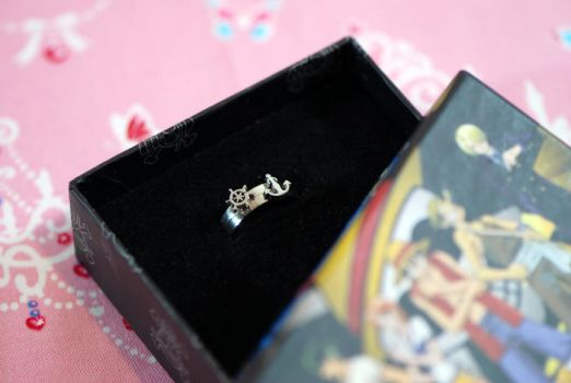 sailor rings by x27