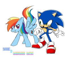 Sonic x Rainbow Dash by 415sonic