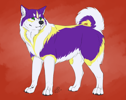 [ commission ] A.L Malamute by simplytresca