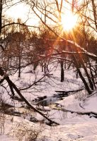 Winter river II by Anna-Belash