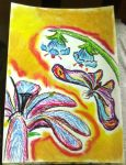 Oil pastels: Flower and Moth by kxeron