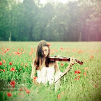 Field Song by eulalievarenne