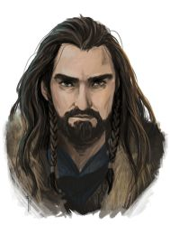 Thorin Oakenshield by LauraTolton