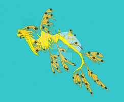 Leafy Sea Dragon by GarnetWings